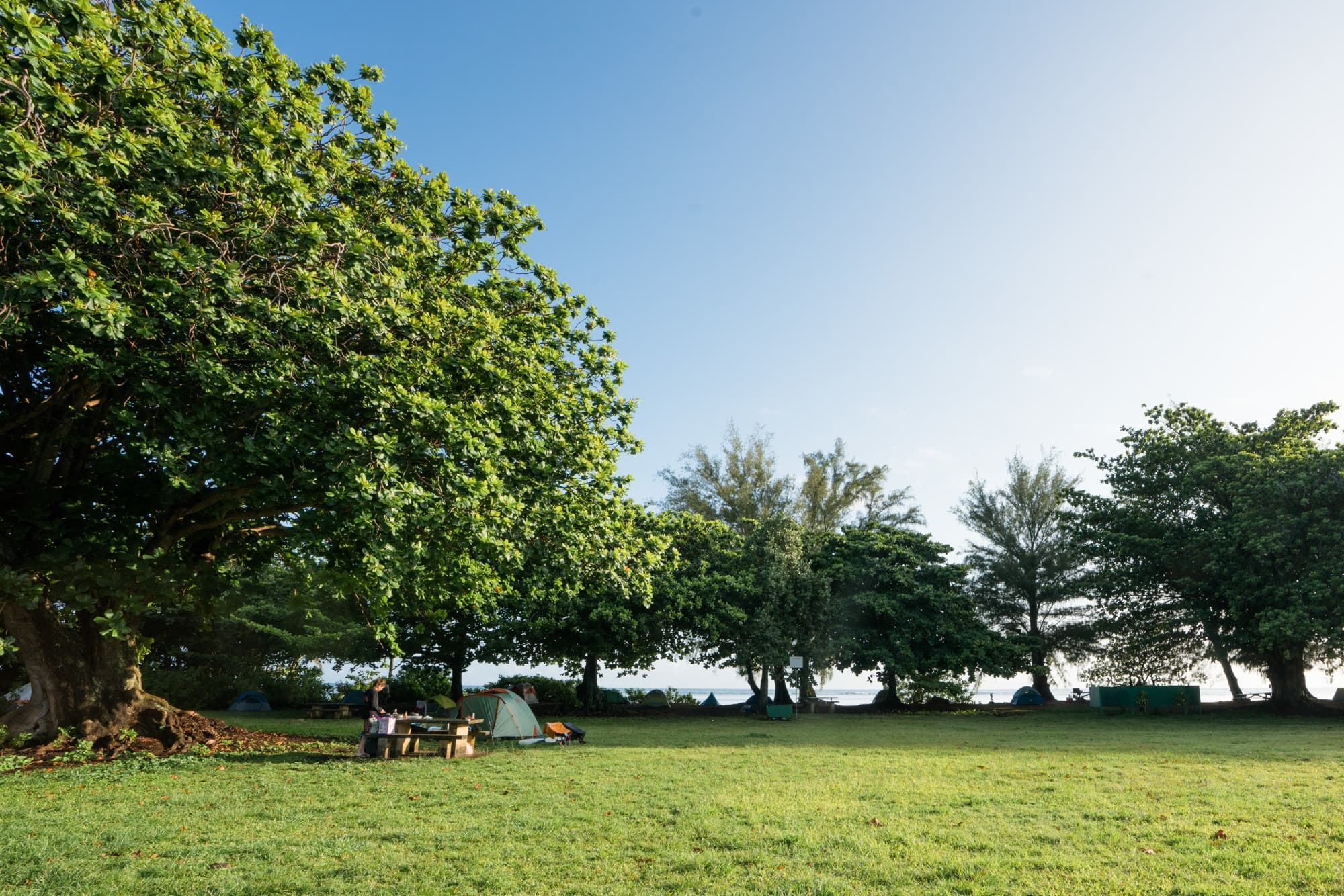 Anini Beach Campground, Kauai