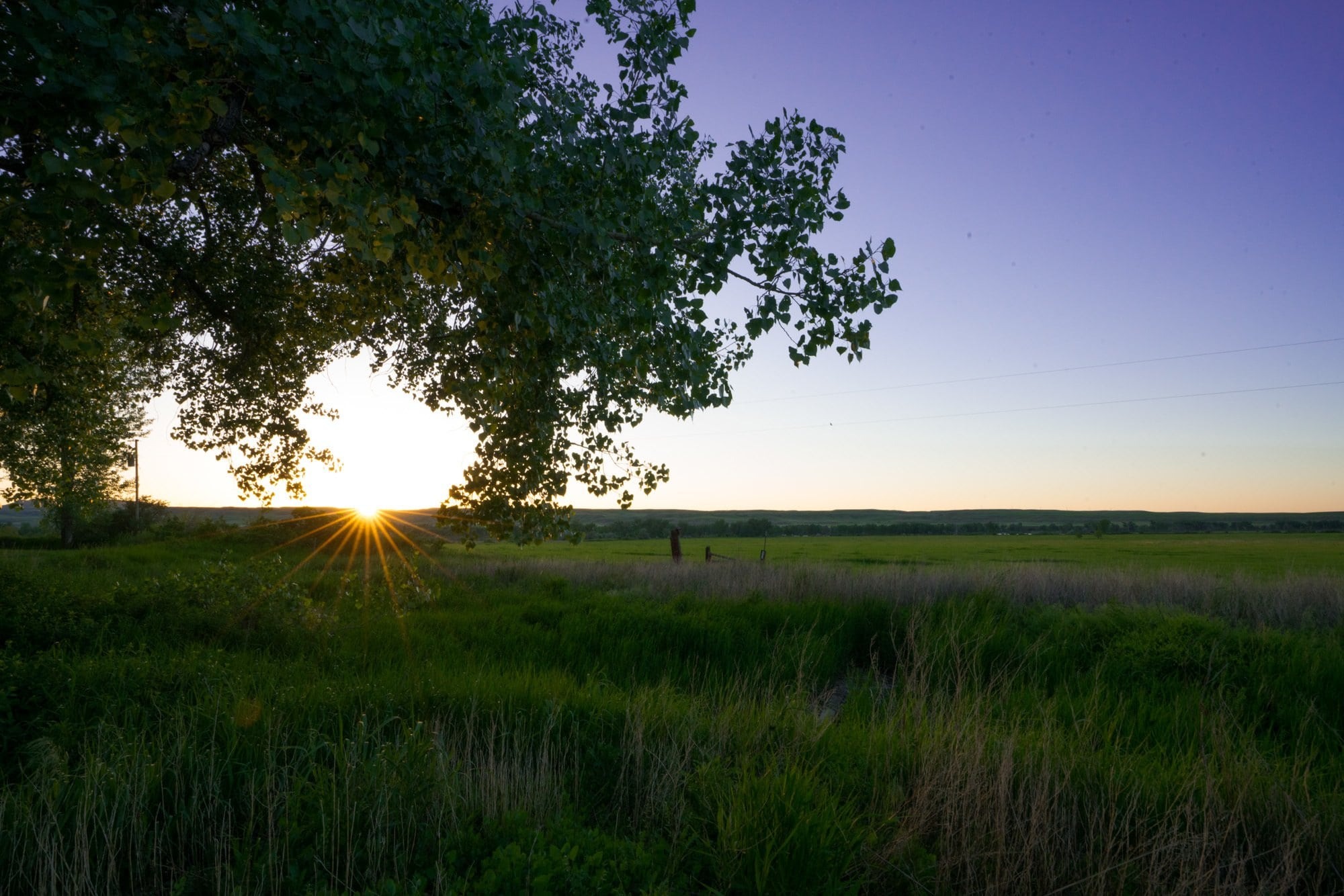 Cottonwood Camp // Explore Southeast Montana with this ultimate 7-day itinerary. Hike through the Badlands, fly fish outside of Billings, Montana, and more!