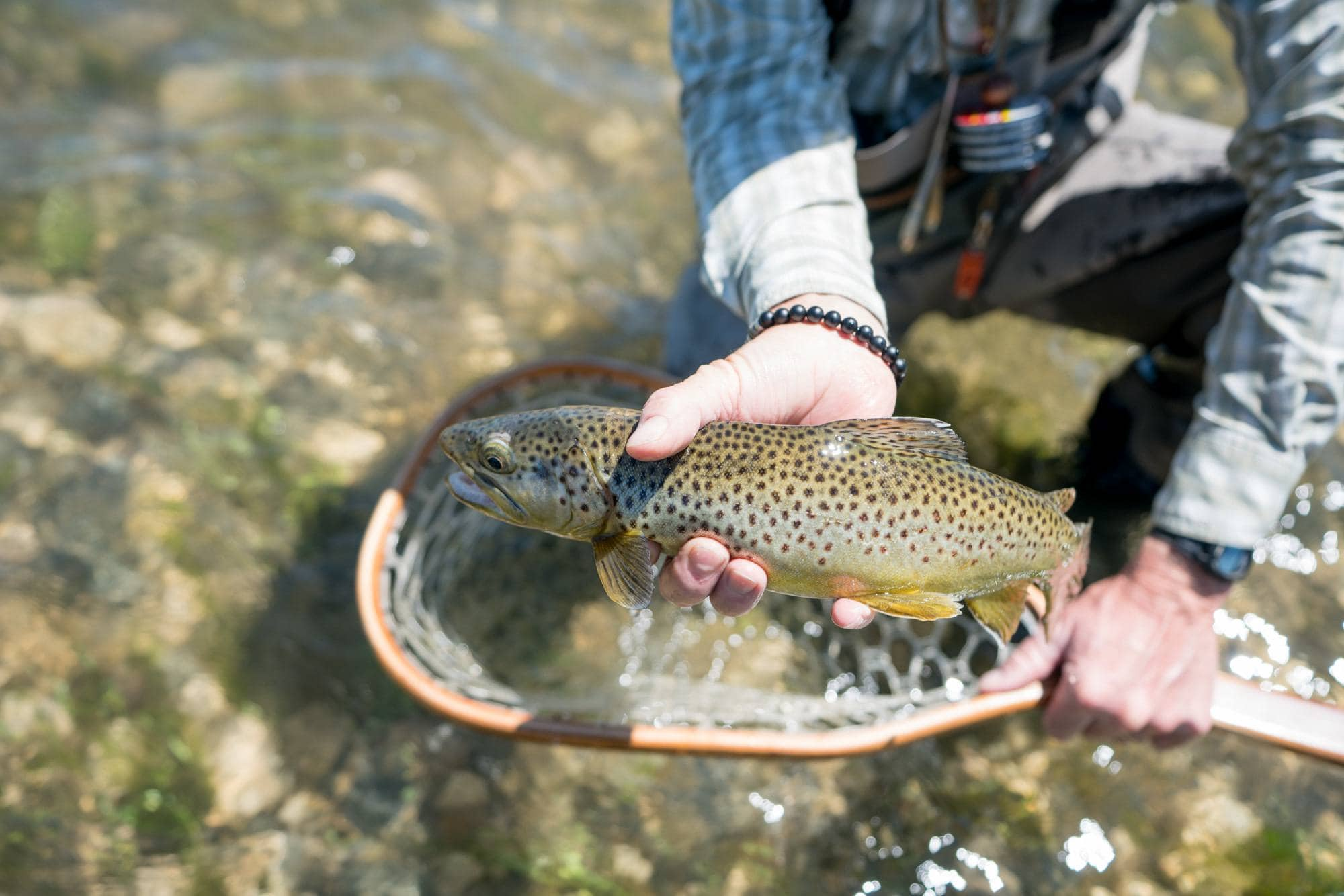 Fly fishing // Explore Southeast Montana with this ultimate 7-day itinerary. Hike through the Badlands, fly fish outside of Billings, Montana, and more!