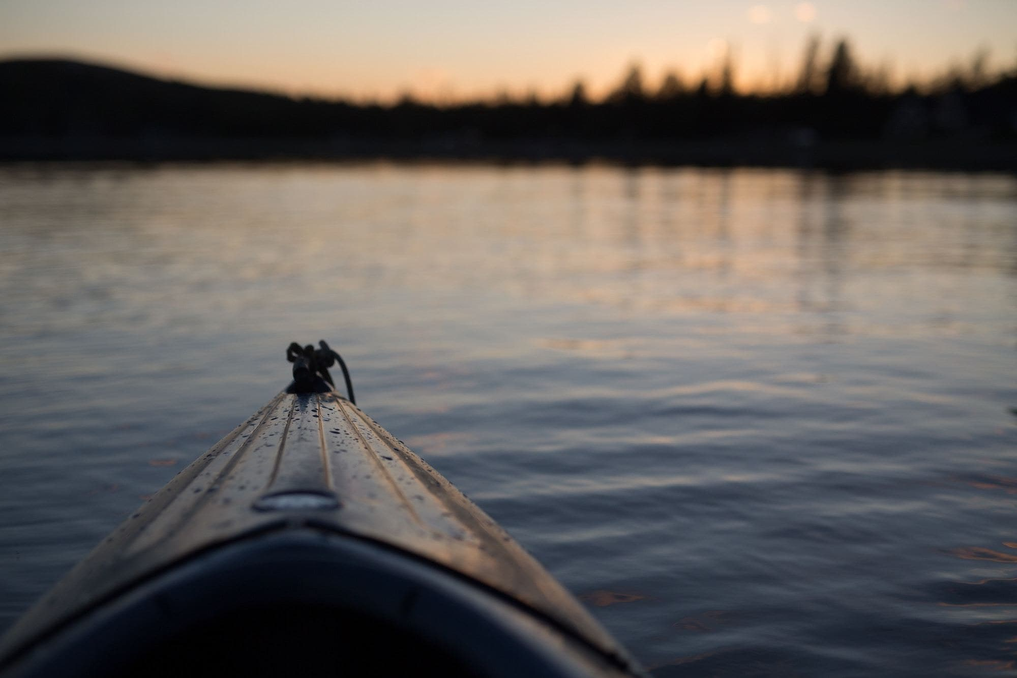 Responsible Boating: Preventing the Spread of Invasive Species in Montana's waters