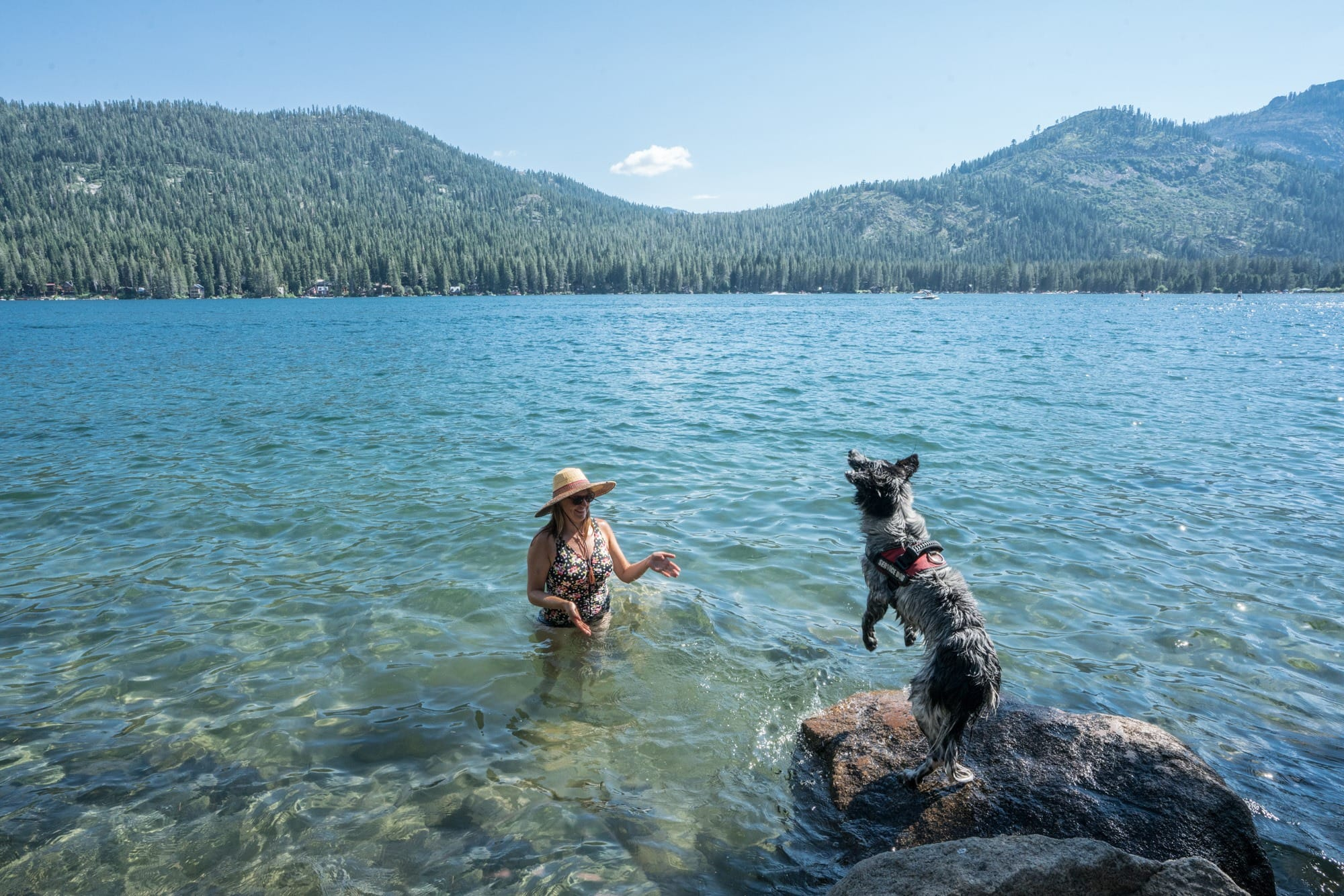 Donner Lake // Planning an adventure-packed vacation to Lake Tahoe? Here are 12 of the best things to do around Lake Tahoe for the outdoor enthusiast.