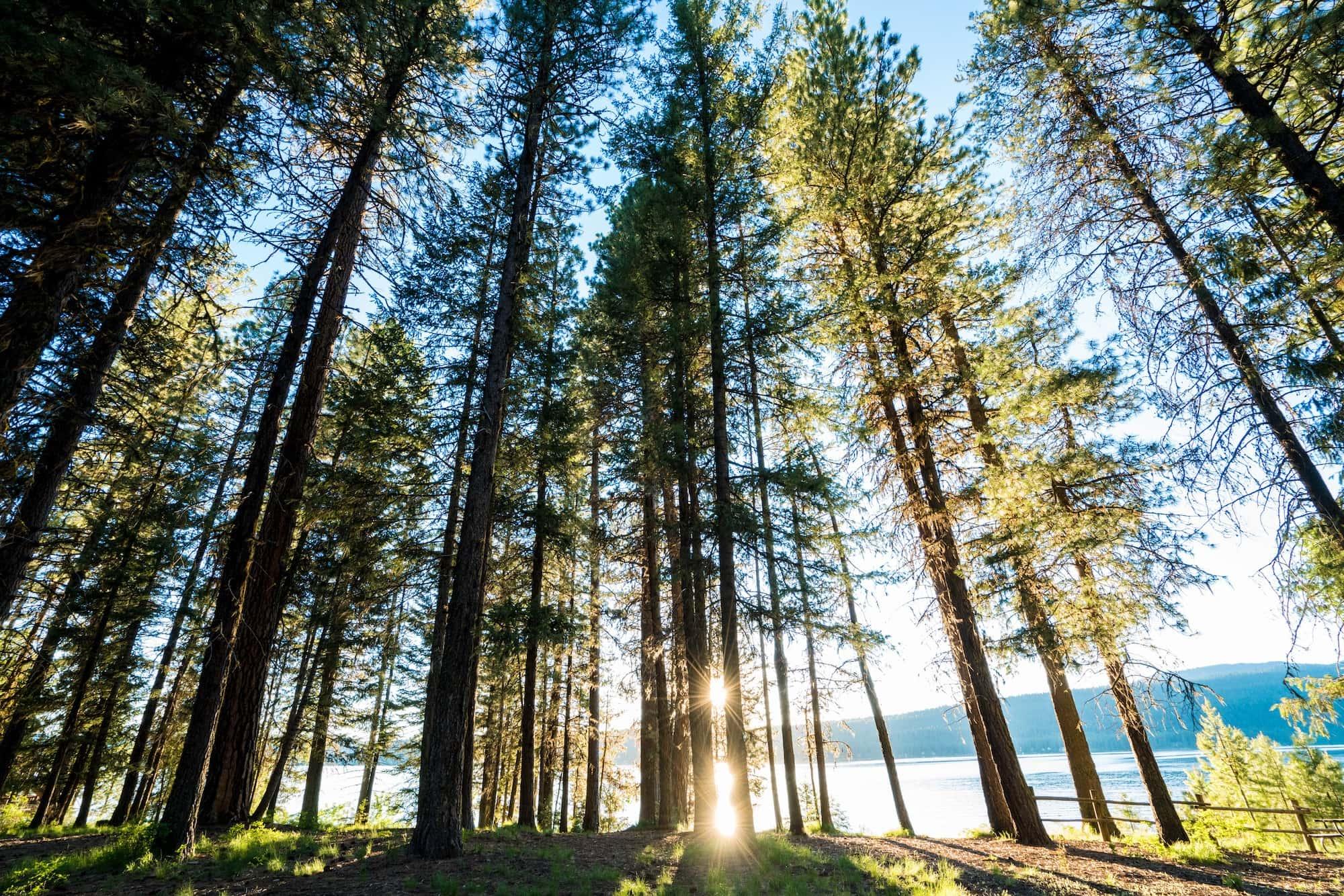 Ponderosa State Park in McCall Idaho