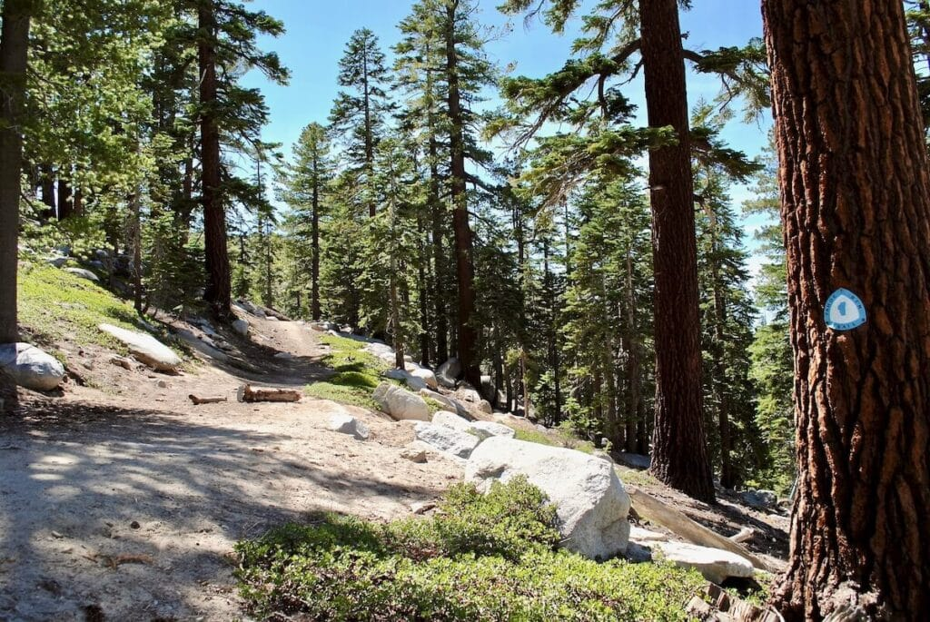 Tahoe Rim Trail // Here are 12 of the best summer Lake Tahoe activities for an adventure-packed vacation from hiking to biking to water sports.