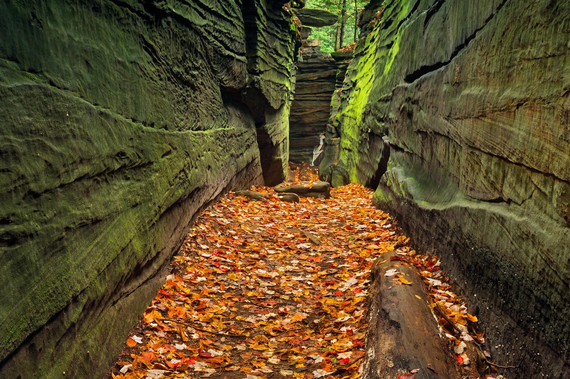 Cuyahoga Valley National Park // Check out the best National Parks to visit in the fall for the a leaf-peeping vacation. Enjoy autumn colors in these 10 great parks.