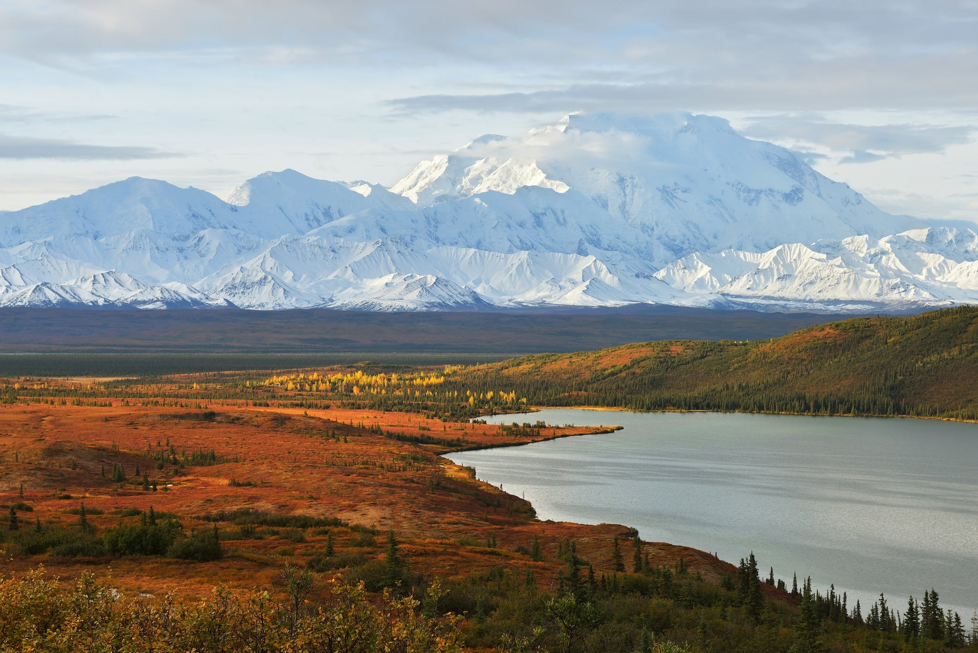 Denali National Park with changing autumn colors.