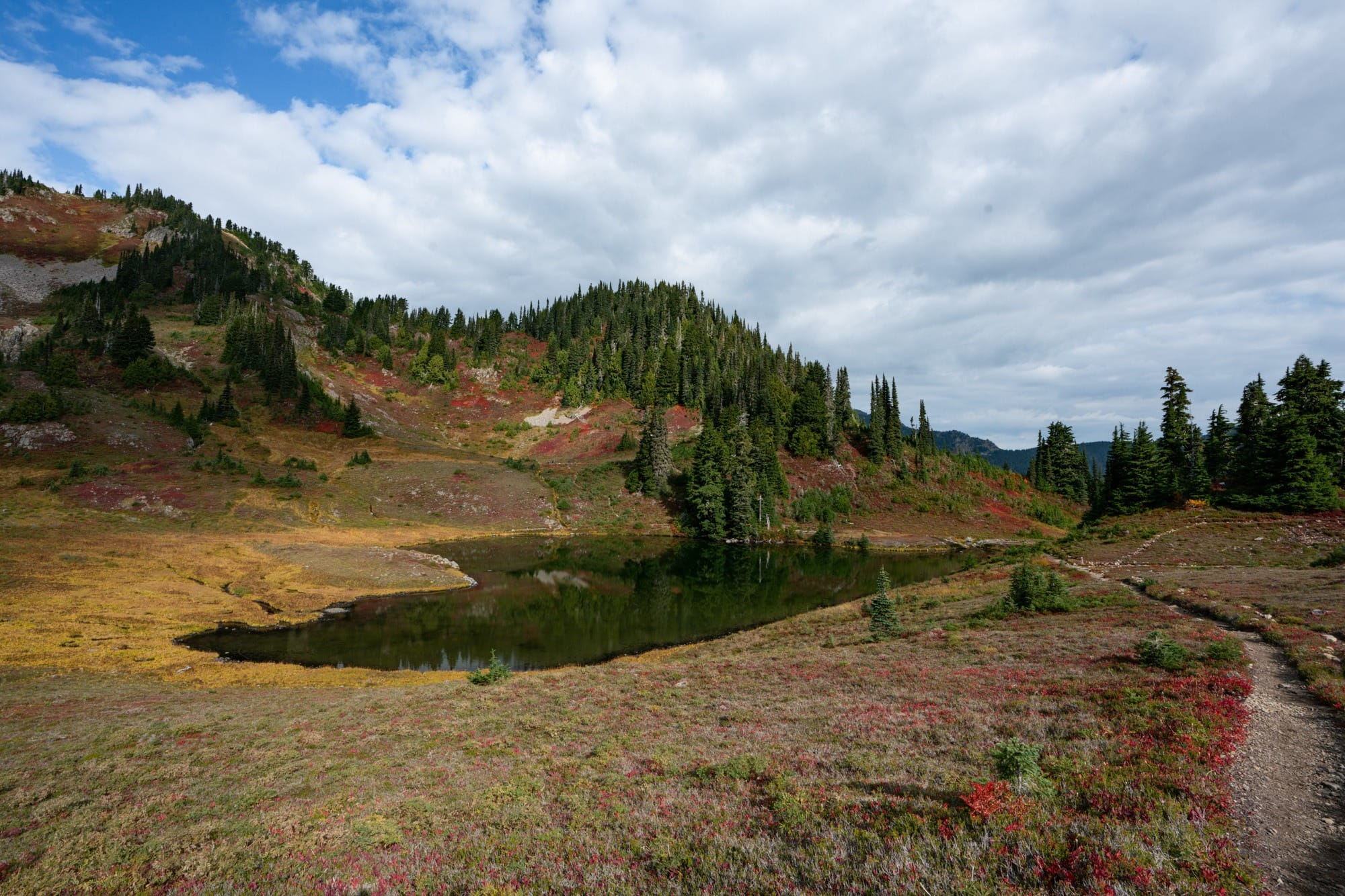 Get my full trail report from backpacking Olympic National Park's High Divide Trail with REI Adventures, including info on campsites, gear & more.