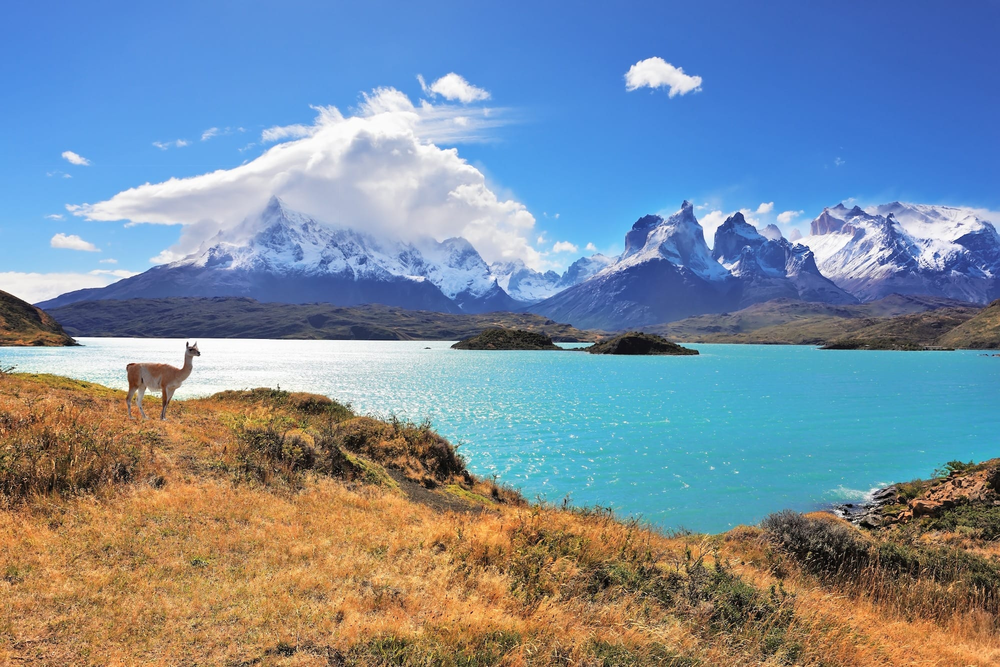 Patagonia Regions Guide: Where Should You Go?