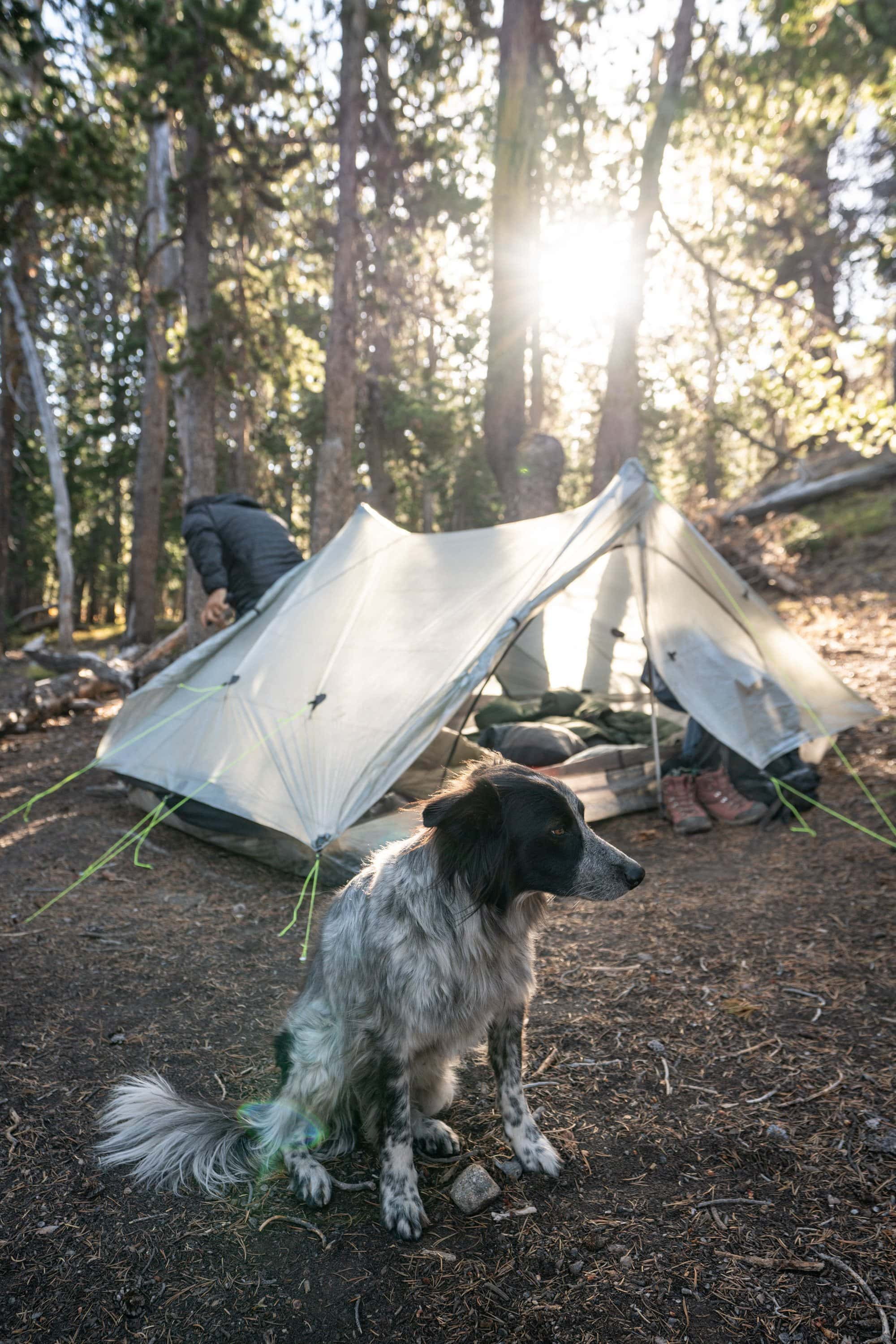 Extend the life of your tent by taking care of it during & after overnight camping trips. Read the best tips for tent care, cleaning & how to do repairs.