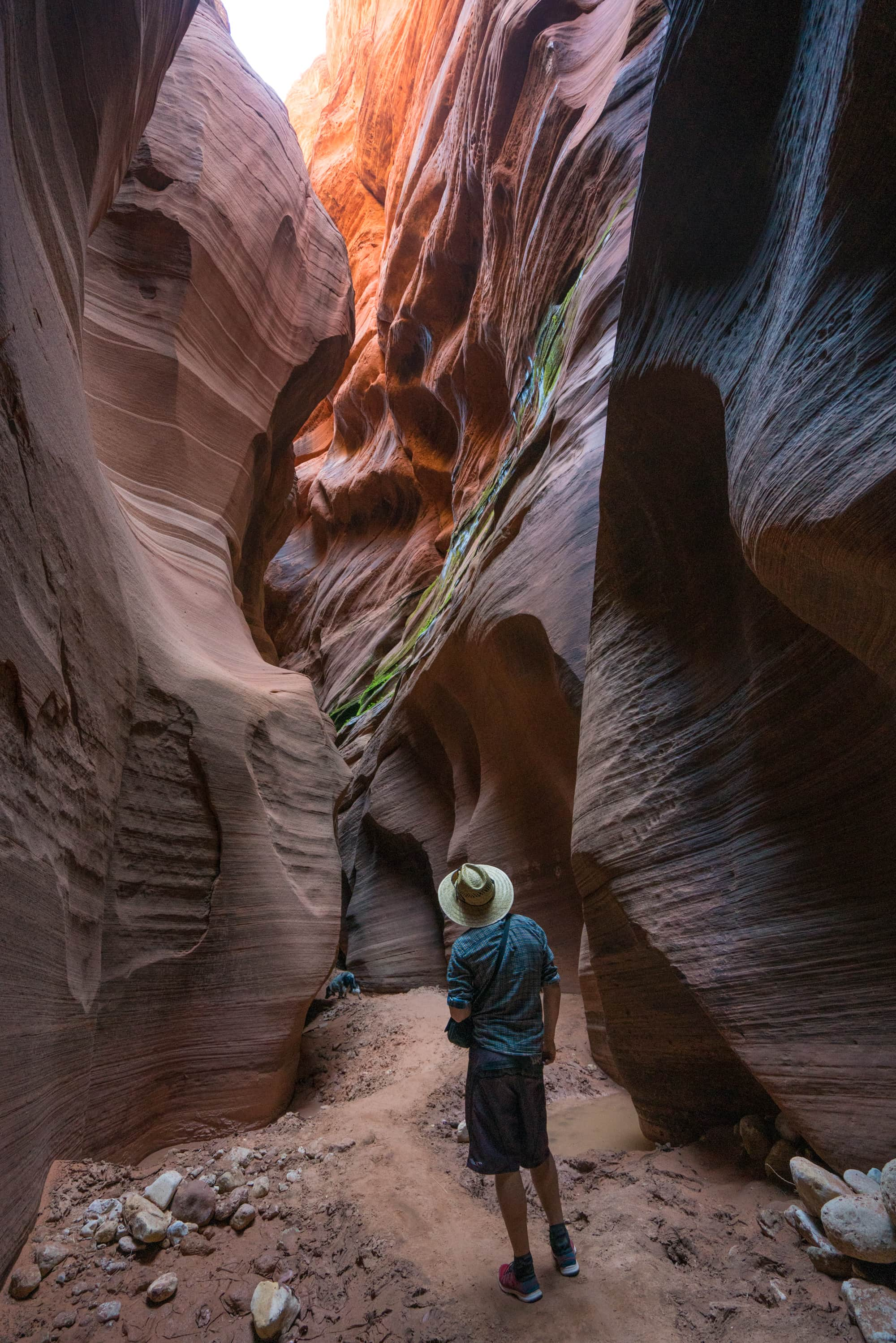 Buckskin Gulch is the longest slot canyon in the US, if not the world // A round-up of the best hikes in Utah. Explore Utah's epic landscapes and get tips for tackling these bucketlist trails.