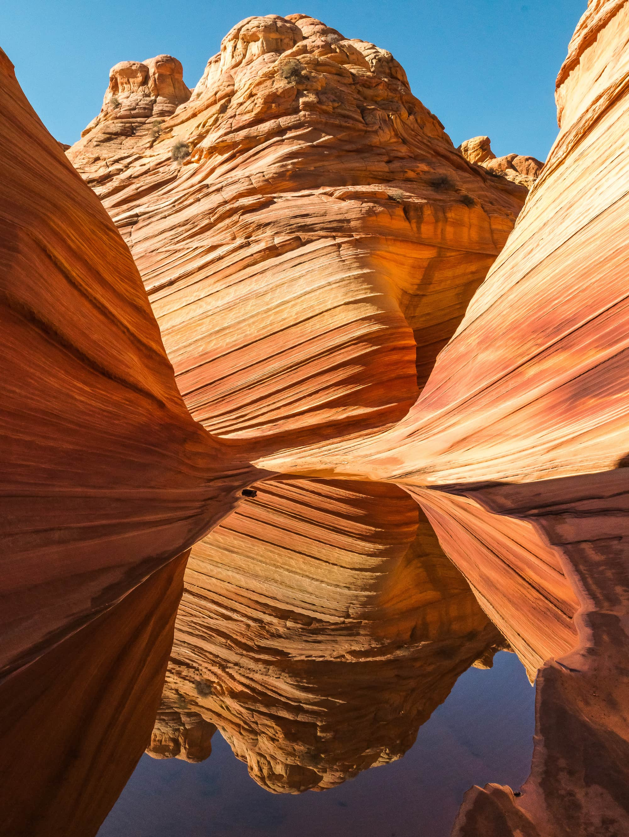 The Wave // A round-up of the best hikes in Utah. Explore Utah's epic landscapes and get tips for tackling these bucketlist trails.