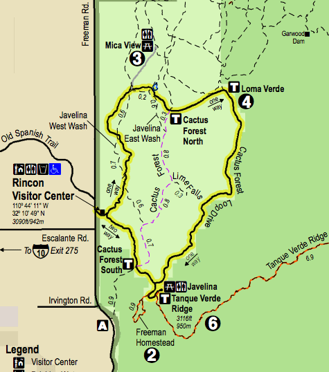 Saguaro National Park Map // Explore the East and West side of Saguaro National Park with this outdoor guide including what to do, best hikes, viewpoints, and more.