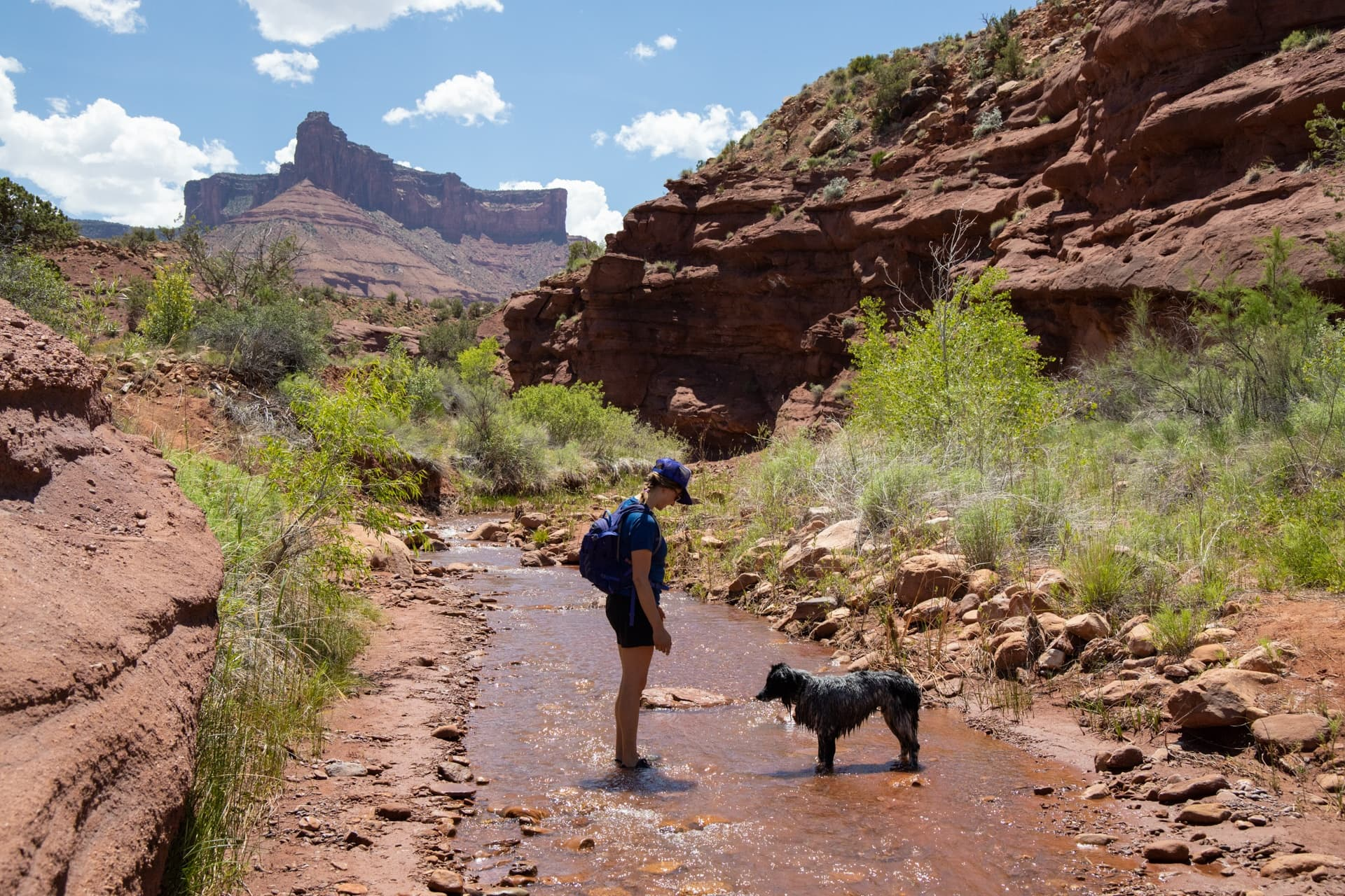 Use these tips to learn how to do Moab like a local and be a responsible visitor while hiking, camping, off-roading and more.