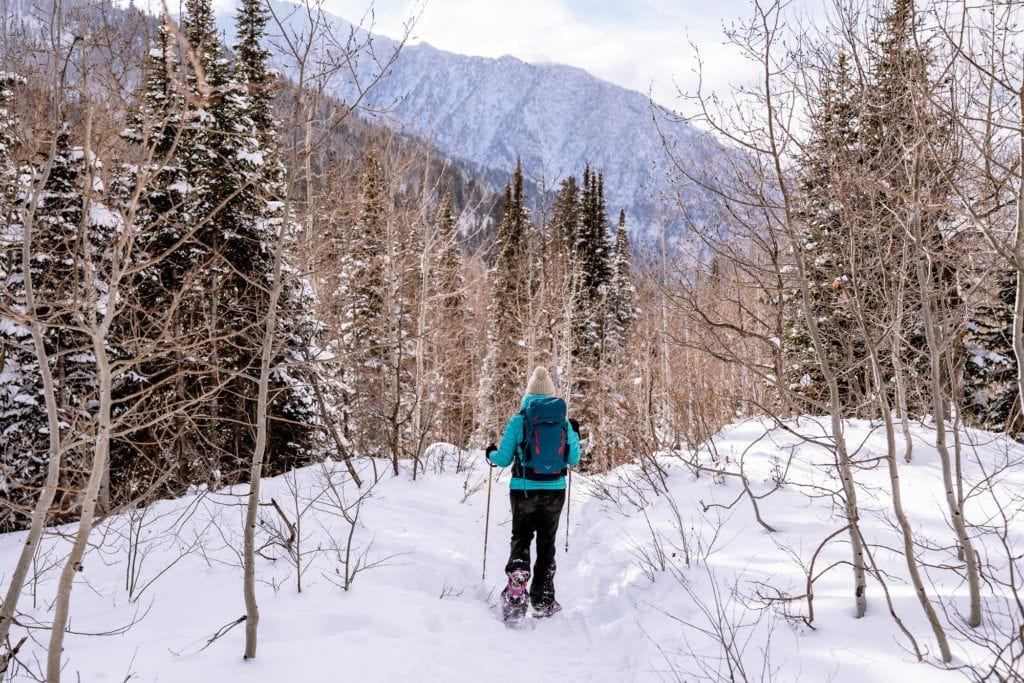 Learn how to snowshoe with our snowshoeing 101 guide. Read tips on how to find trails, buy snowshoeing gear, and other important safety tips.