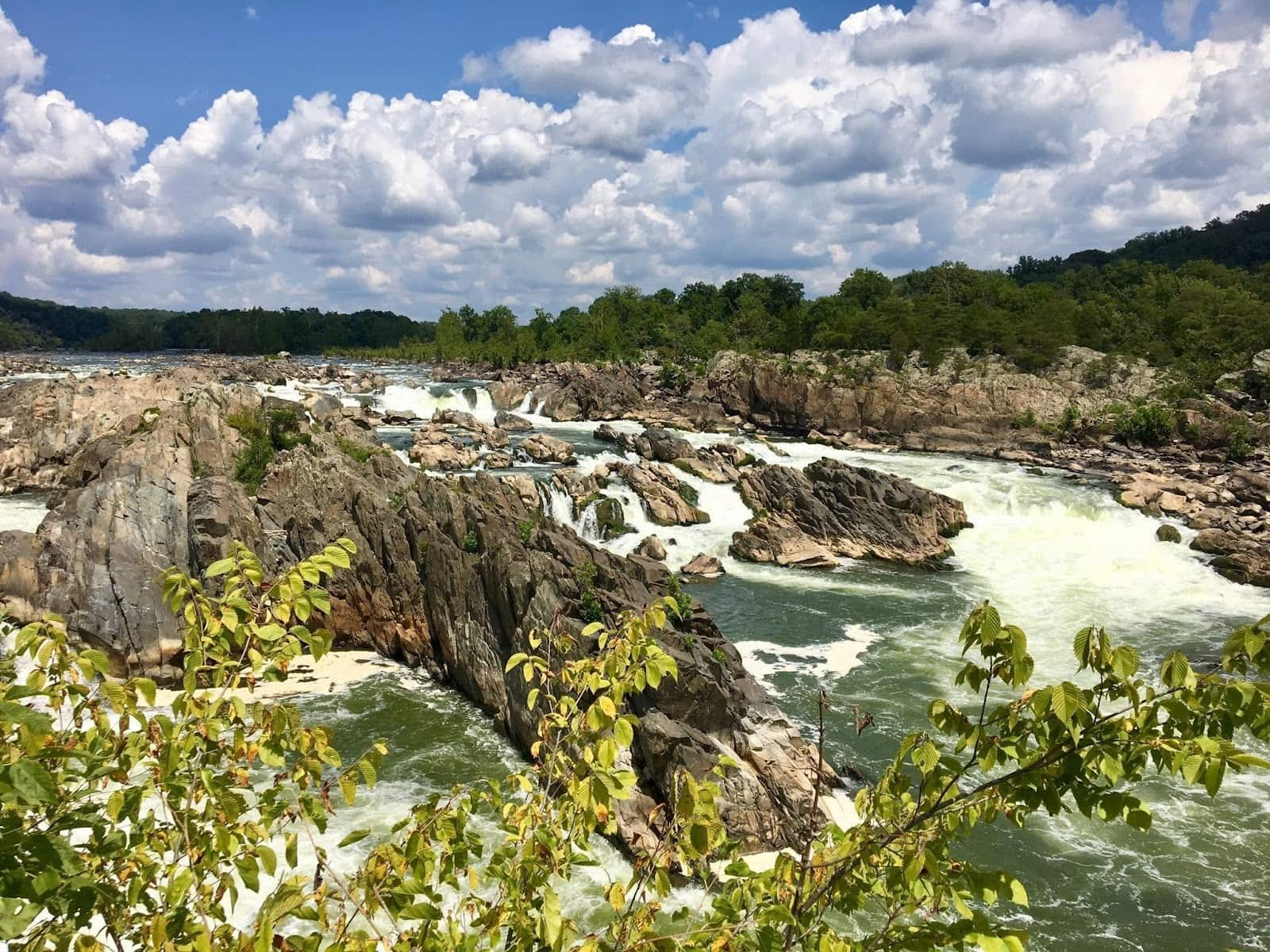 Great Falls Overlook // Looking for the best hikes in Maryland? Here are our 7 favorite Maryland trails including distances, descriptions, and local tips.