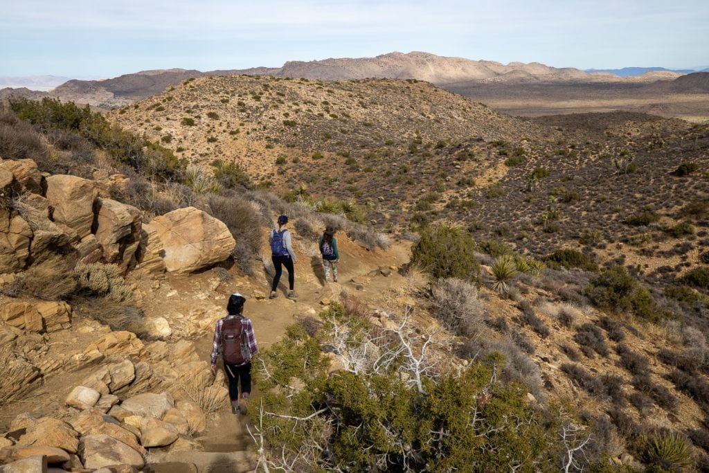 Headed to Joshua Tree National Park for the first time? Here's details on the 3 best Joshua Tree hikes, plus info on where to stay during your trip