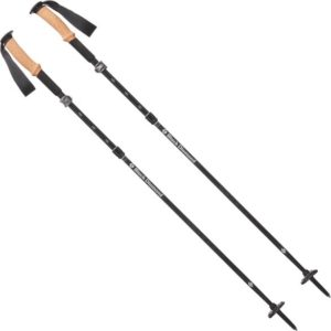 Black Diamond Alpine FLZ Trekking Poles // The best four season trekking poles