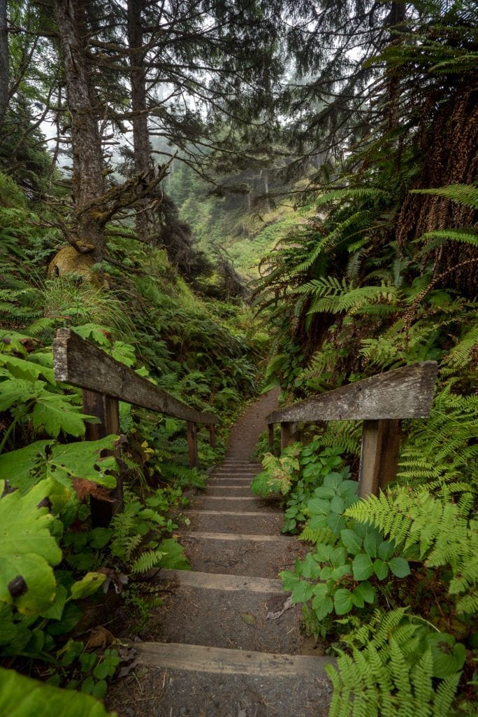 Get this detailed 6-day Olympic National Park Itinerary & road trip tips for the best hikes, campsites, beaches, & food in this incredible PNW wilderness.