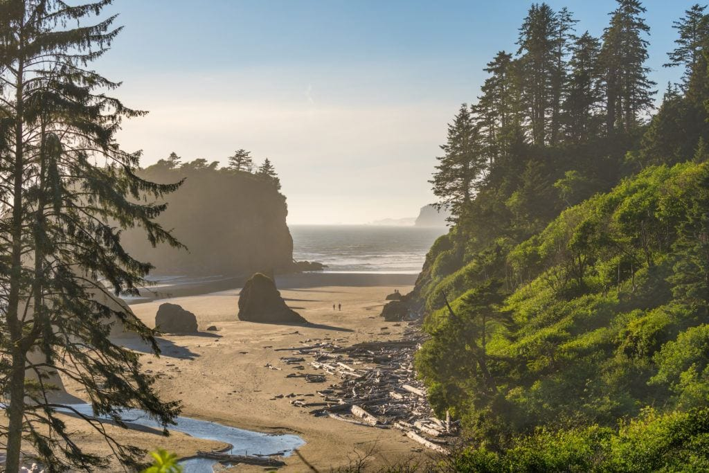 Olympic National Park // Plan your Washington road trip with this guide to the best stops for outdoor adventure including National Parks, towns, hikes, and more.