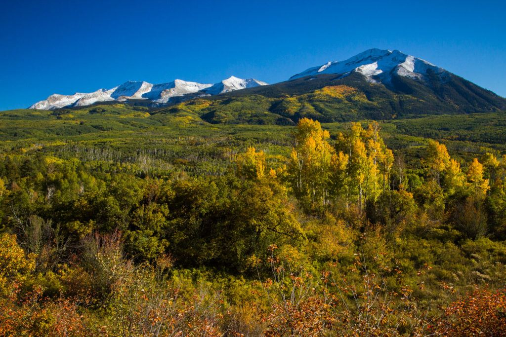 Kebler Pass // Experience the best Colorado fall colors with this road trip itinerary that takes you through some of the best aspen groves in the state.