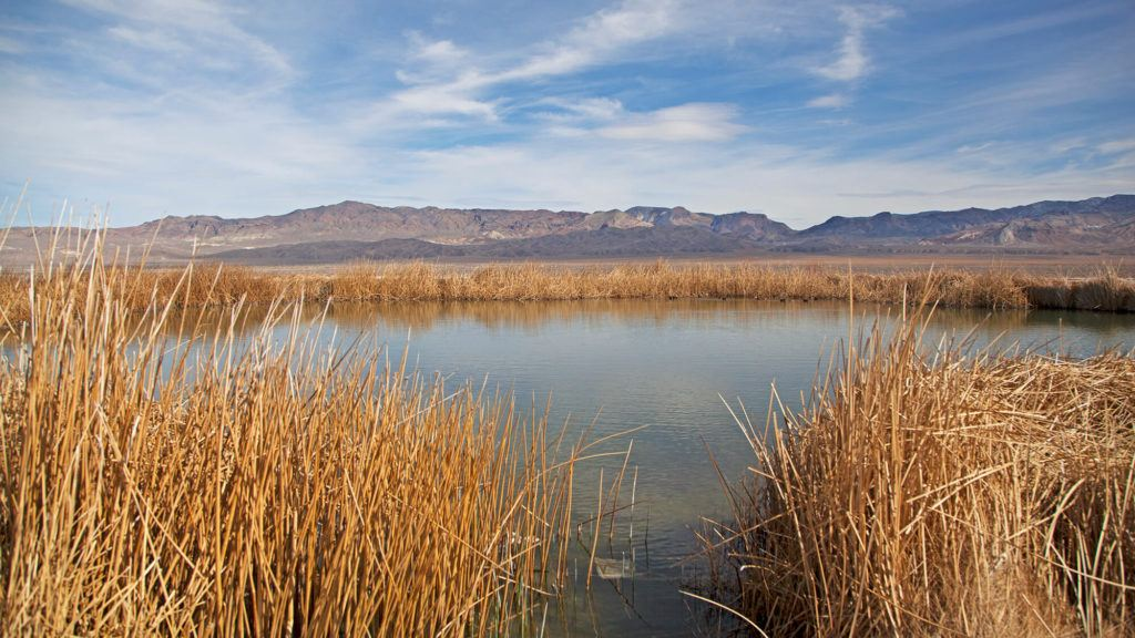 Fish Lake Valley Hot Springs // Check the map, grab your (birthday) suit, and head to one of these best hot springs in Nevada for the ultimate natural soak.