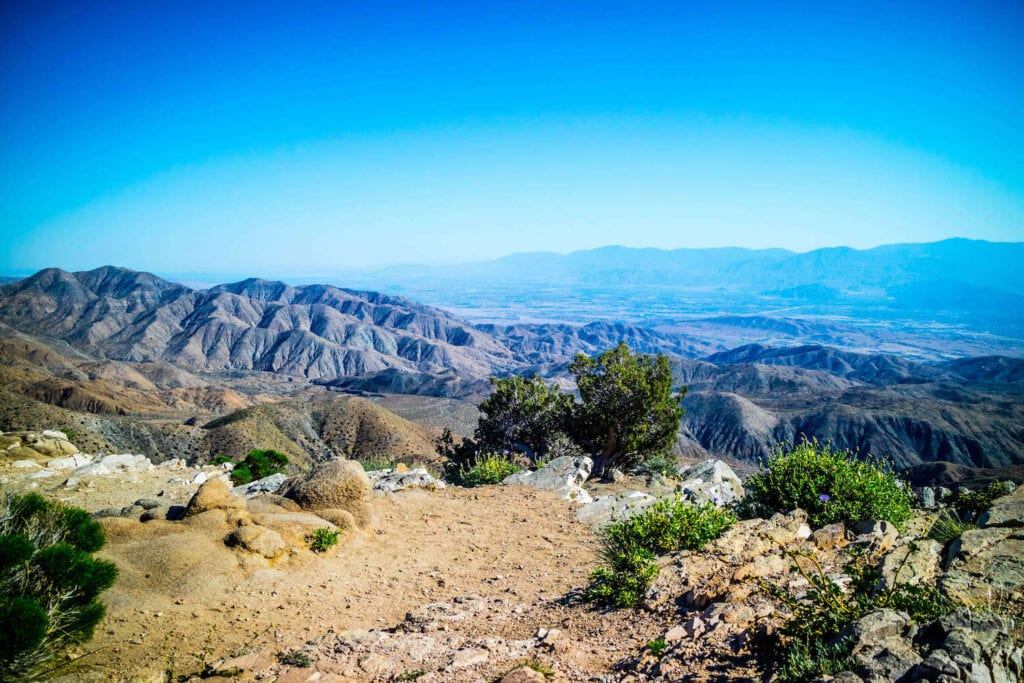 Ryan Mountain Trail // Headed to Joshua Tree National Park for the first time? Here's details on the 3 best Joshua Tree hikes, plus info on where to stay during your trip