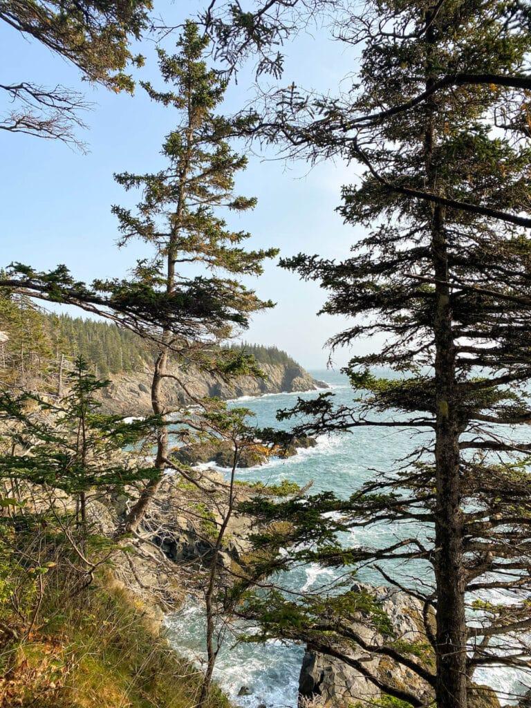 Cutler Coast trail views in Maine