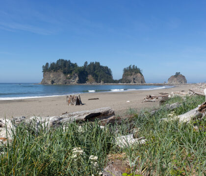 This guide to backpacking the South Coast Trail in Olympic National Park will prepare you for an epic beach backpacking trip in Washington.