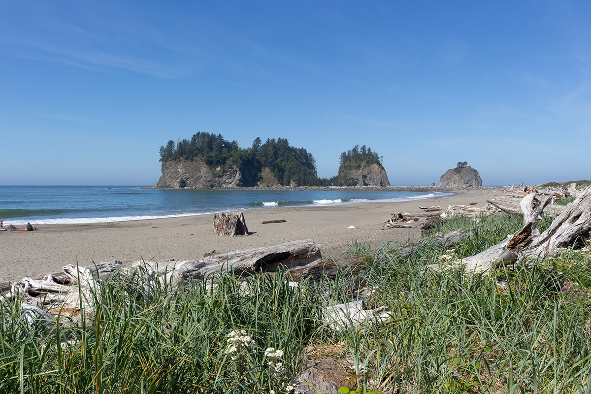 Olympic National Park Beach Backpacking: South Coast Trail Guide