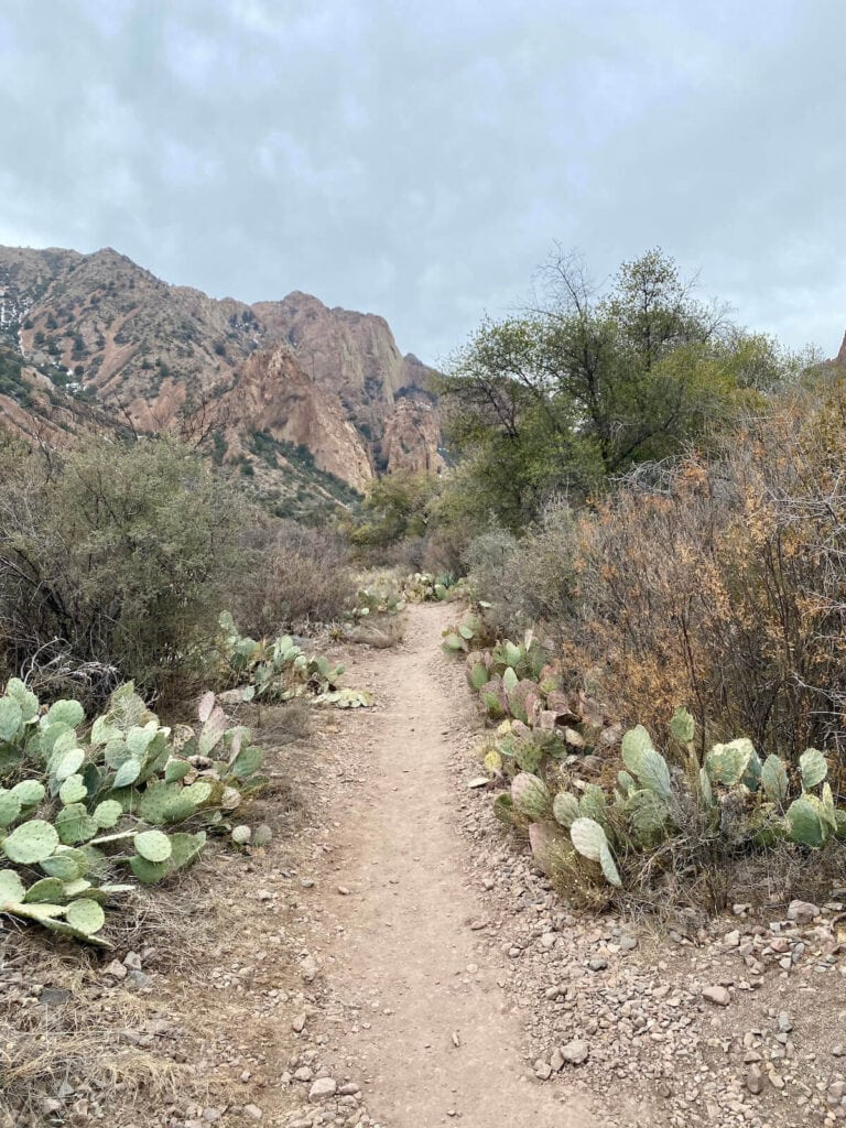 Hiking in Big Bend National Park, Texas