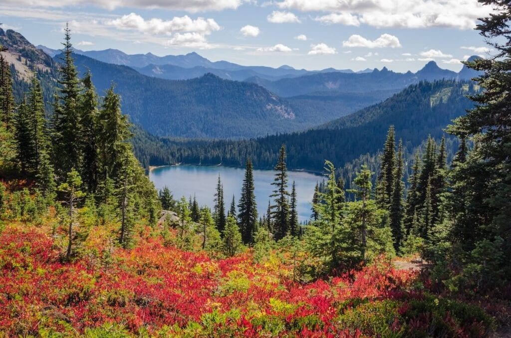 Plan your trip to Mt. Rainier National Park with our guide to the best Mt. Rainier hikes for epic views during the summer.