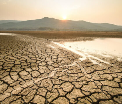 Learn about drought conditions in the West, including what causes drought and the impact on wildlife and our food supply.
