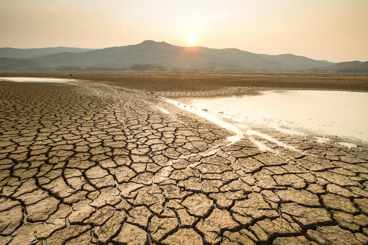 Drought Conditions Are Plaguing the West – What Can You Do About It?