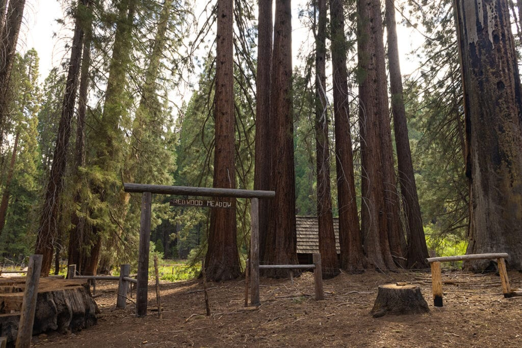 Redwood Meadow on the Mineral King Loop in Sequoia National Park