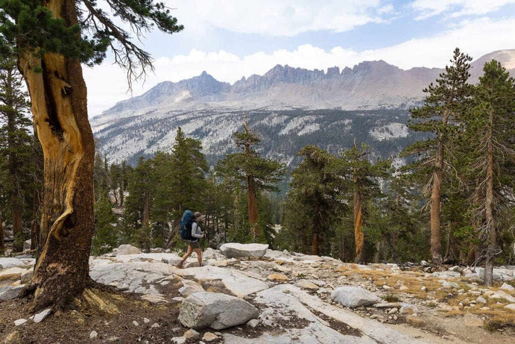 Views from the Mineral King Loop in Sequoia National Park