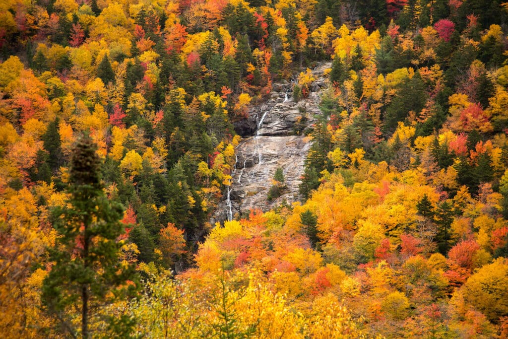 Arethusa Falls Crawford Notch State Park // Explore the best New Hampshire hikes to see fall foliage with our comprehensive hiking guide including directions and trail stats.